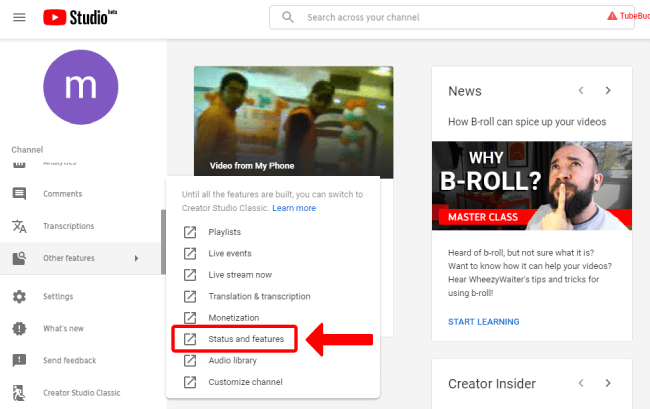 YouTube Status & features option