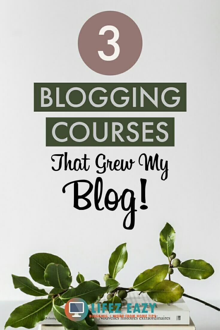 Pinterest pin for blogging books