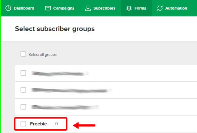 Subscriber group name to link with Mailerlite form