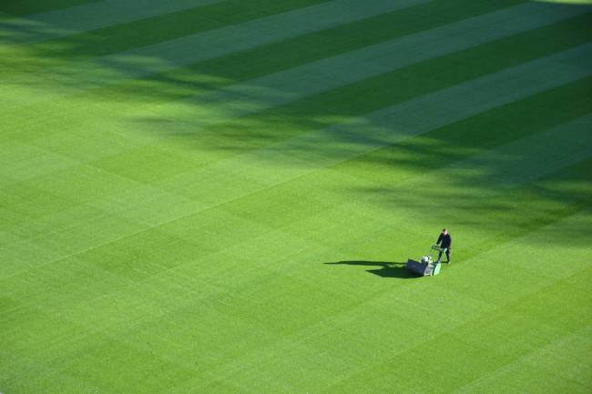 A person Mowing a Lawn