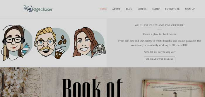 Page Chaser website