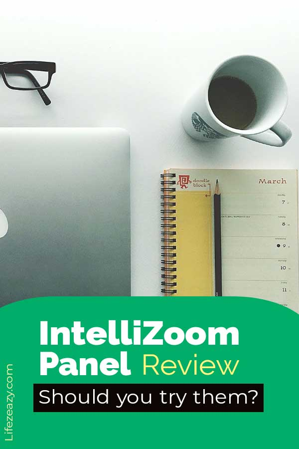 IntelliZoom panel review Pinterest pin